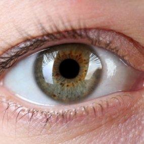 Ortho-K lenses