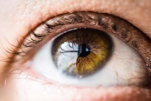 Can Dry Eyes Cause Blurry Vision and Perhaps Vision Loss? What You Need to  Know
